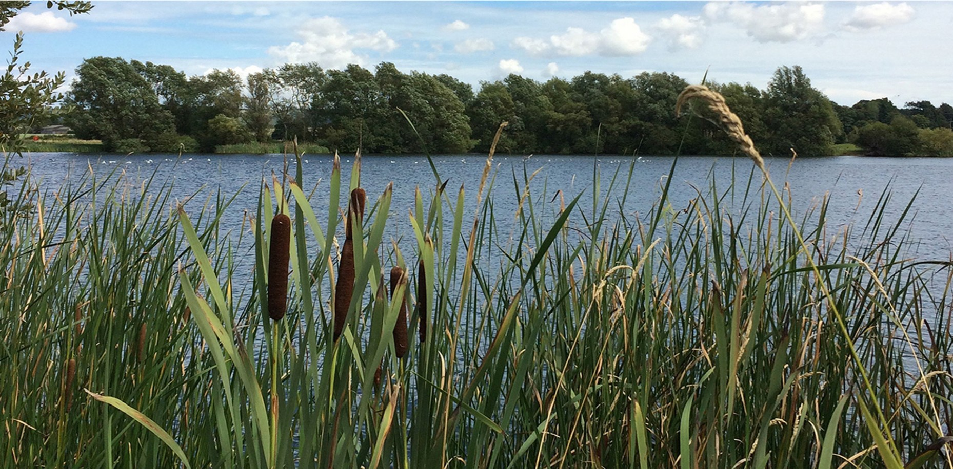 March Super Offer weekend on Saturday 6th & Sunday 7th March at Conningbrook Lakes, Ashford